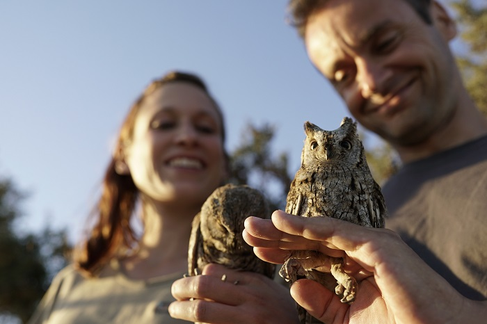 Members of CABS with Scops owls freed from nets in Cyprus