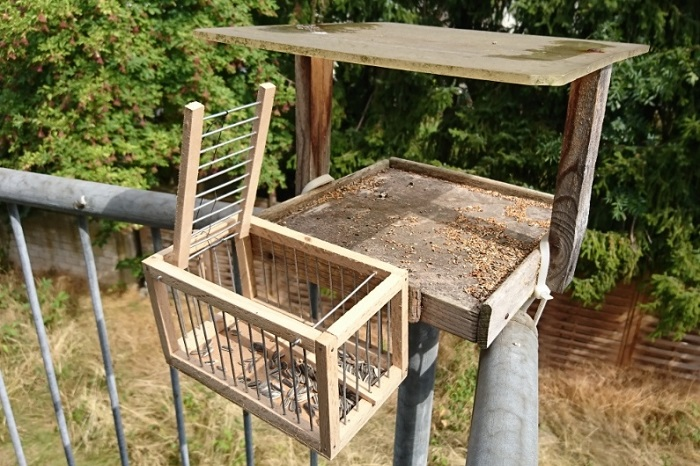 Cage trap - one of the most frequently used songbird traps in Germany