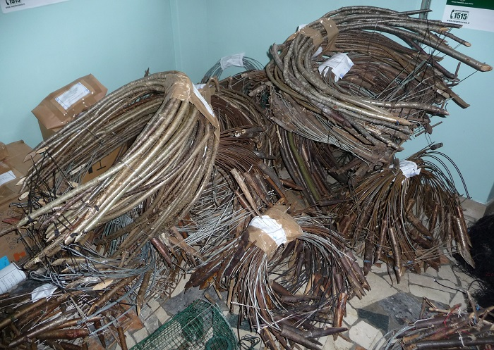 Bow traps collected in Brescia