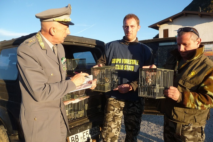 Police officers seizing illegal decoy birds