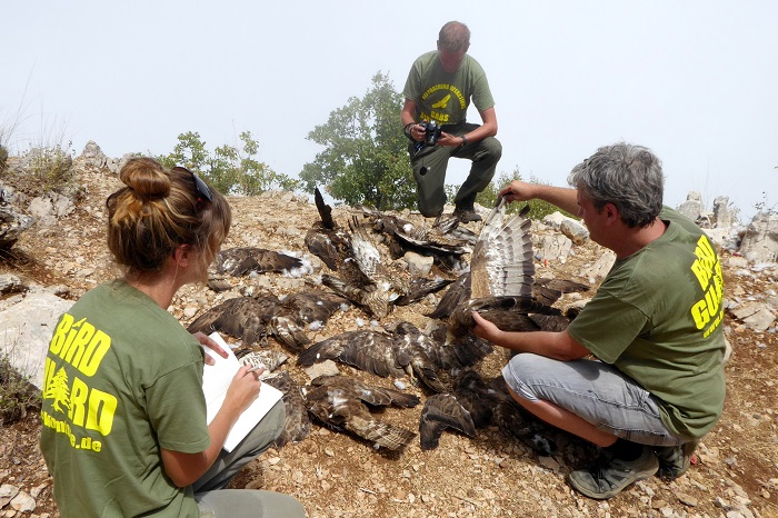 CABS members at the bird protection camp in Lebanon