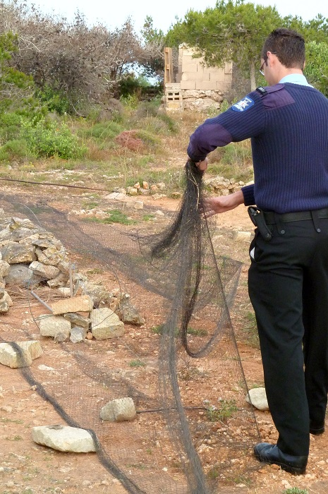 Maltese policeman dismantling a trapping net found by CABS